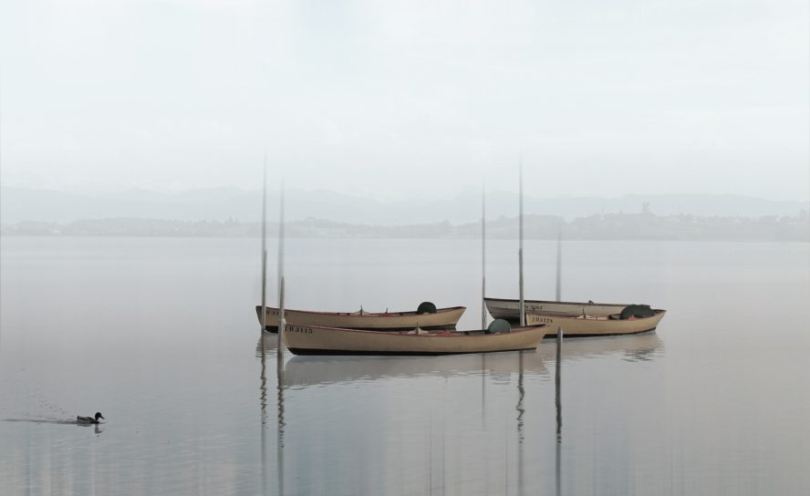 Fiskerinæringen i Skandinavia